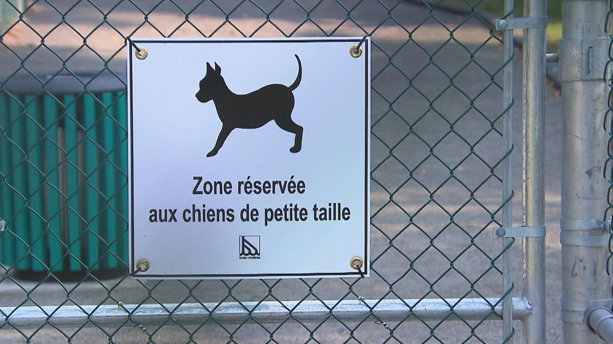 Le parc canin inauguré à Trois-Rivières est divisé en deux parties : l'une pour les petits chiens, l'autre pour ceux de grande taille.