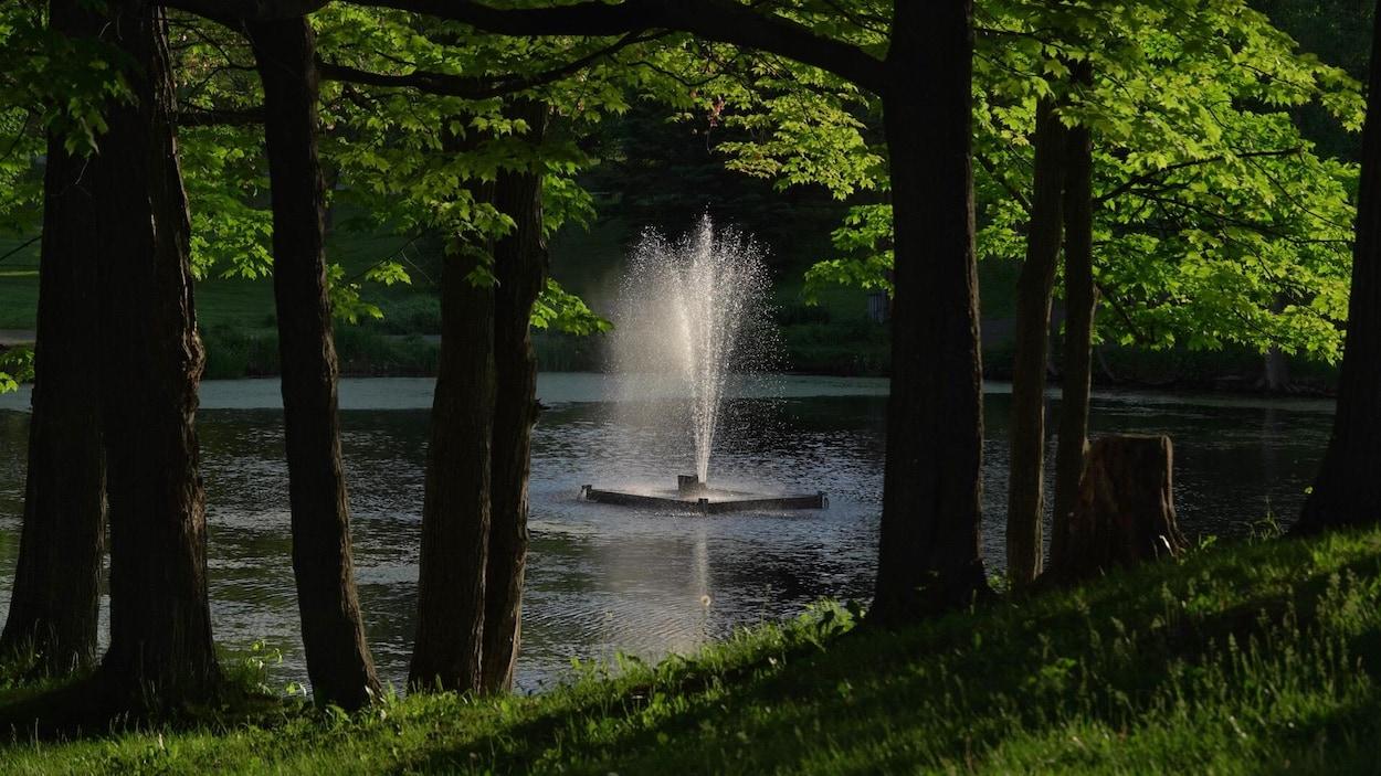 Une fontaine dans un étang entouré d'arbres.