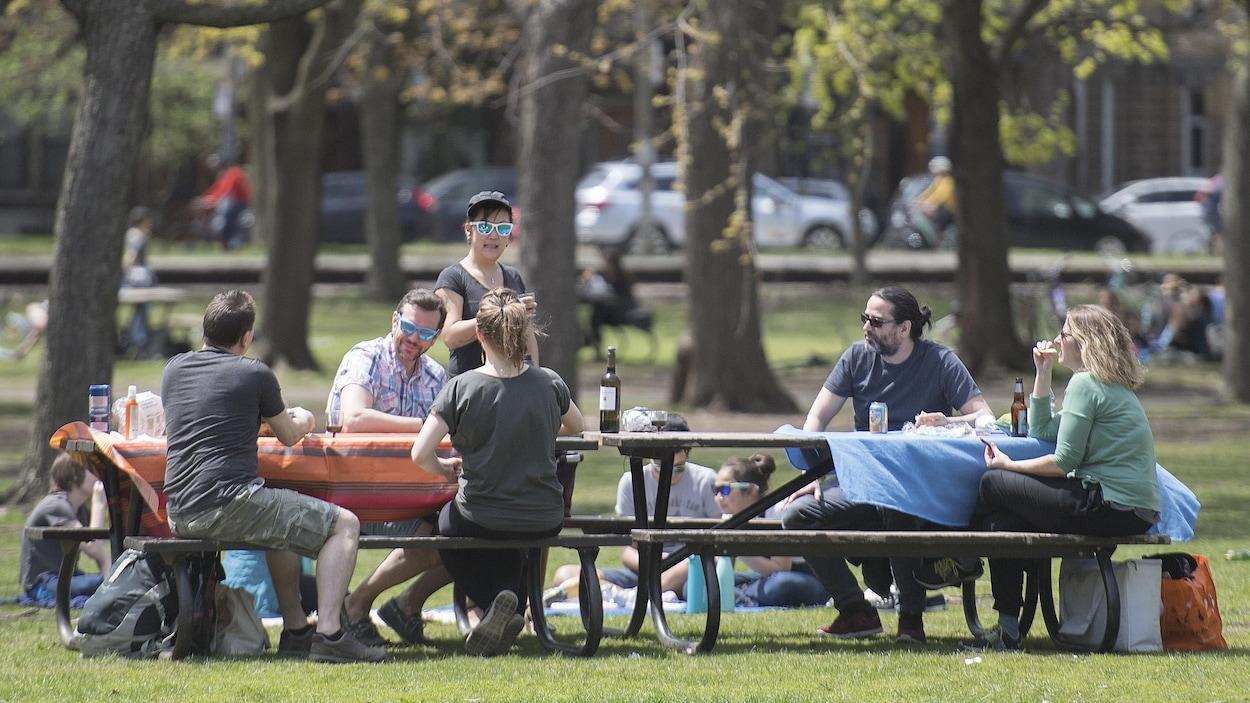 Six personnes sont assises à des tables à pique-nique, à distance réglementaire en temps de pandémie, dans un parc de Montréal.