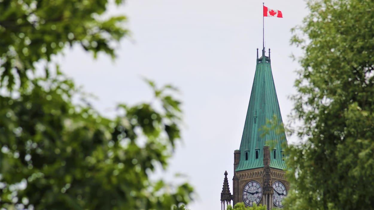 Le parlement canadien, à Ottawa, en été.