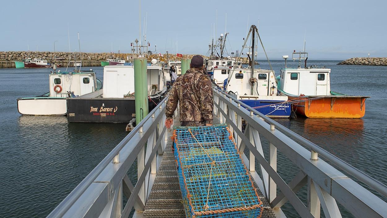 Un pêcheur traînant un casier à homard sur un quai.