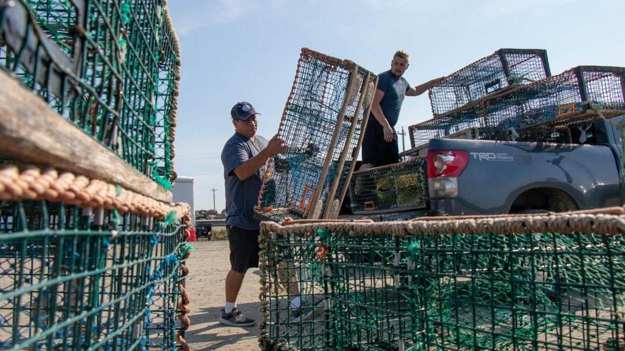 Deux hommes chargent des casiers à homard vides dans une camionnette.