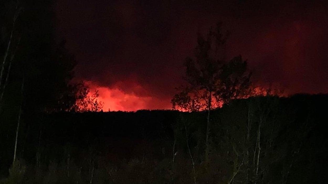 Un incendie de forêt la nuit.