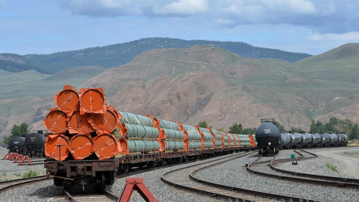 Un train transporte des sections de pipelines devant un paysage montagneux.