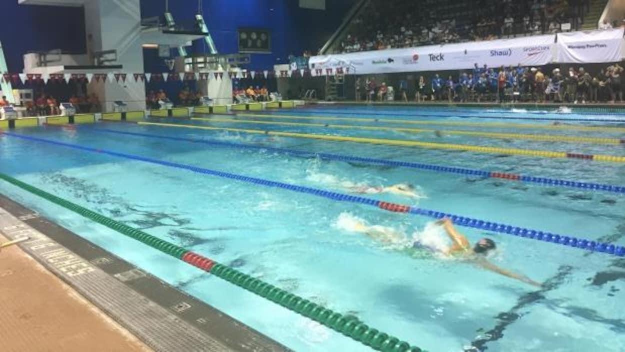 Des nageurs à la piscine Pan Am