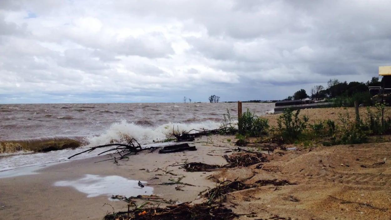 Une vague s'échoue sur une plage.