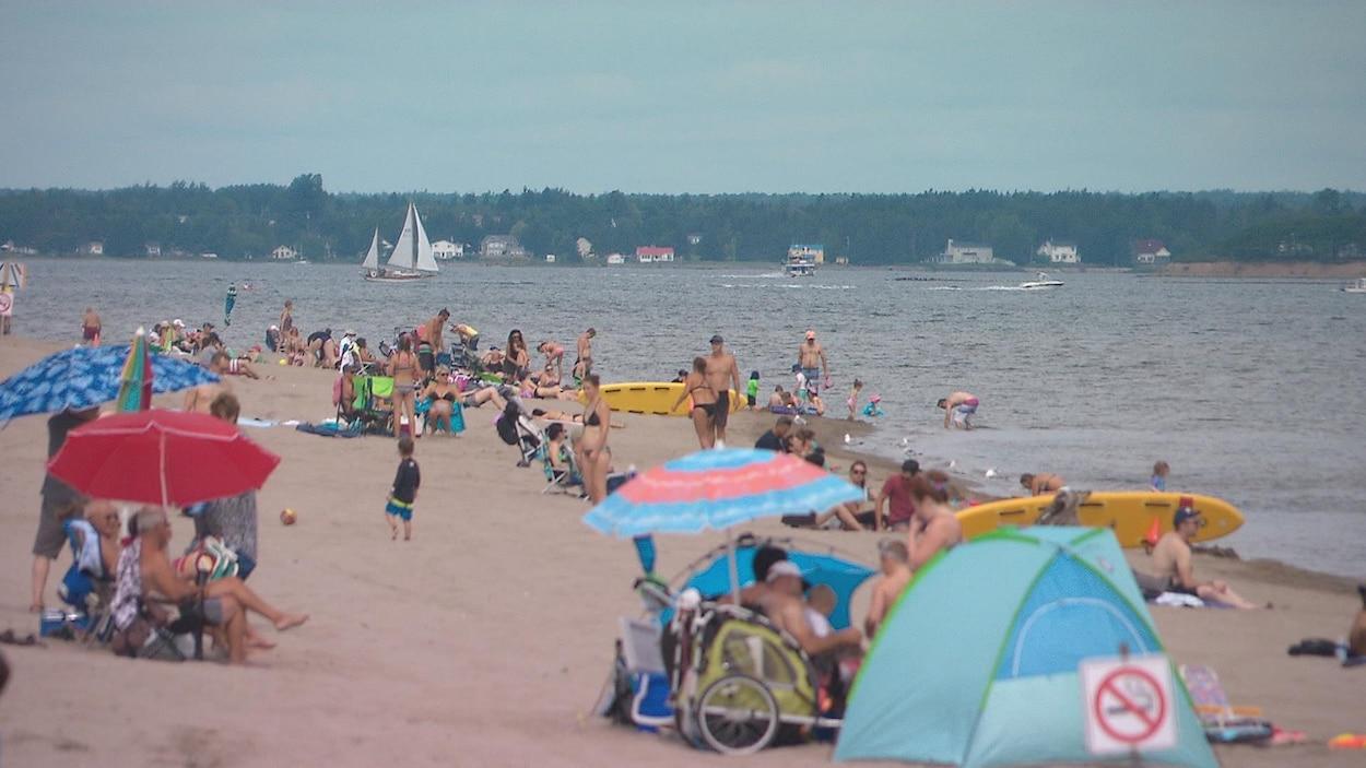 Des baigneurs sur la plage en été
