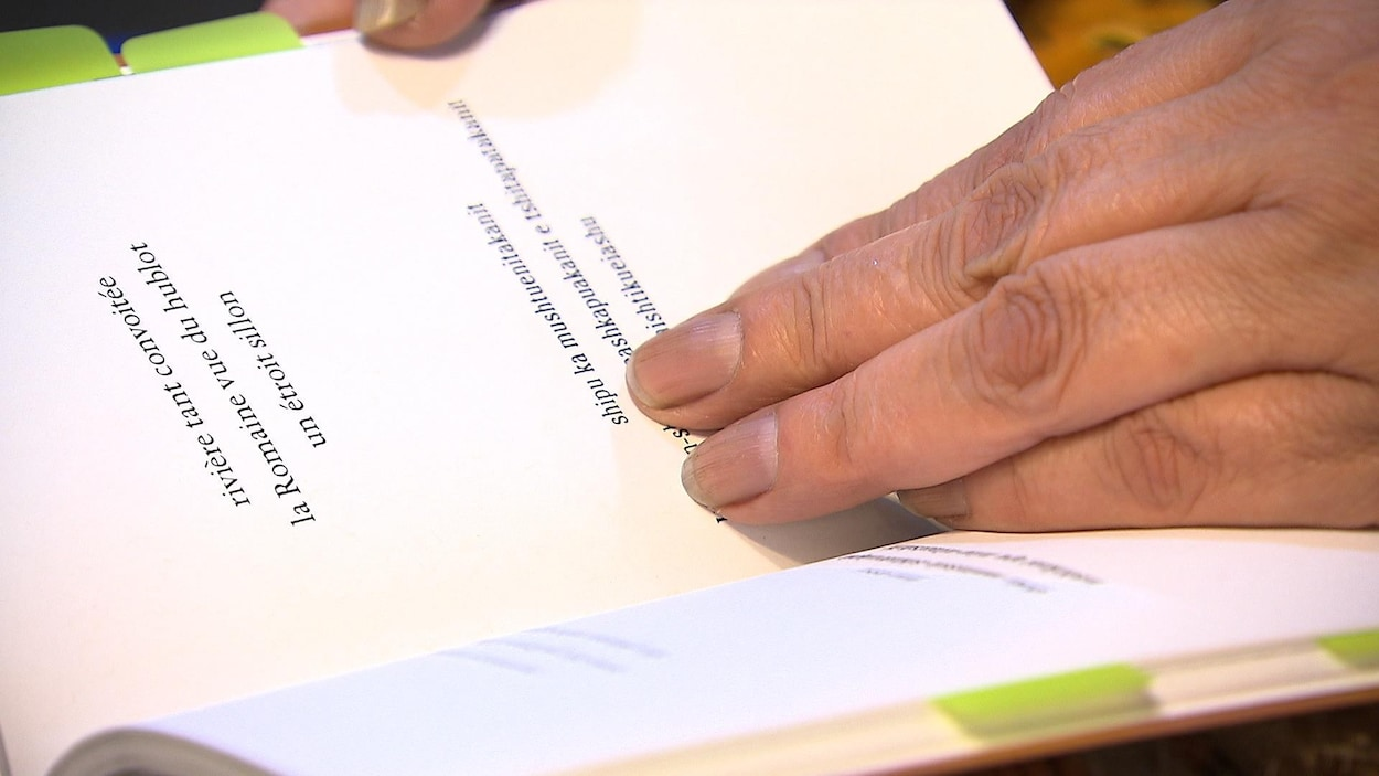Des mains tiennent ouvert un recueil de poésie
