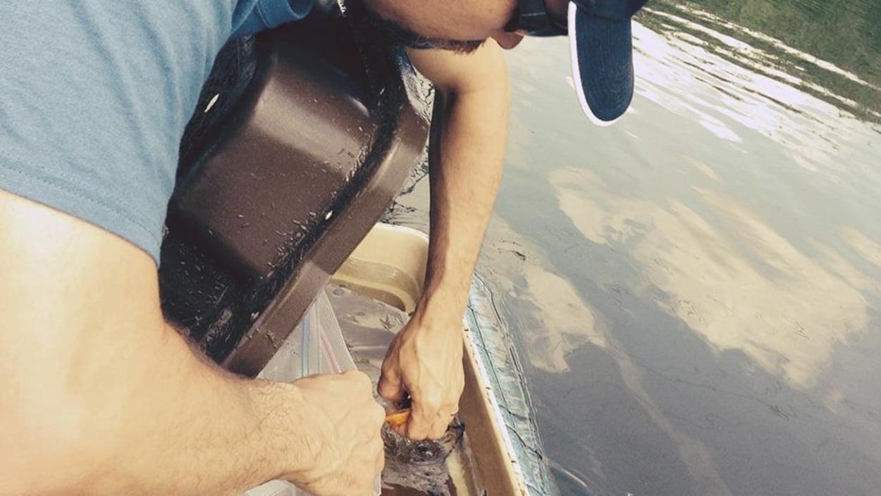 Un homme retire un poisson d'un piège.