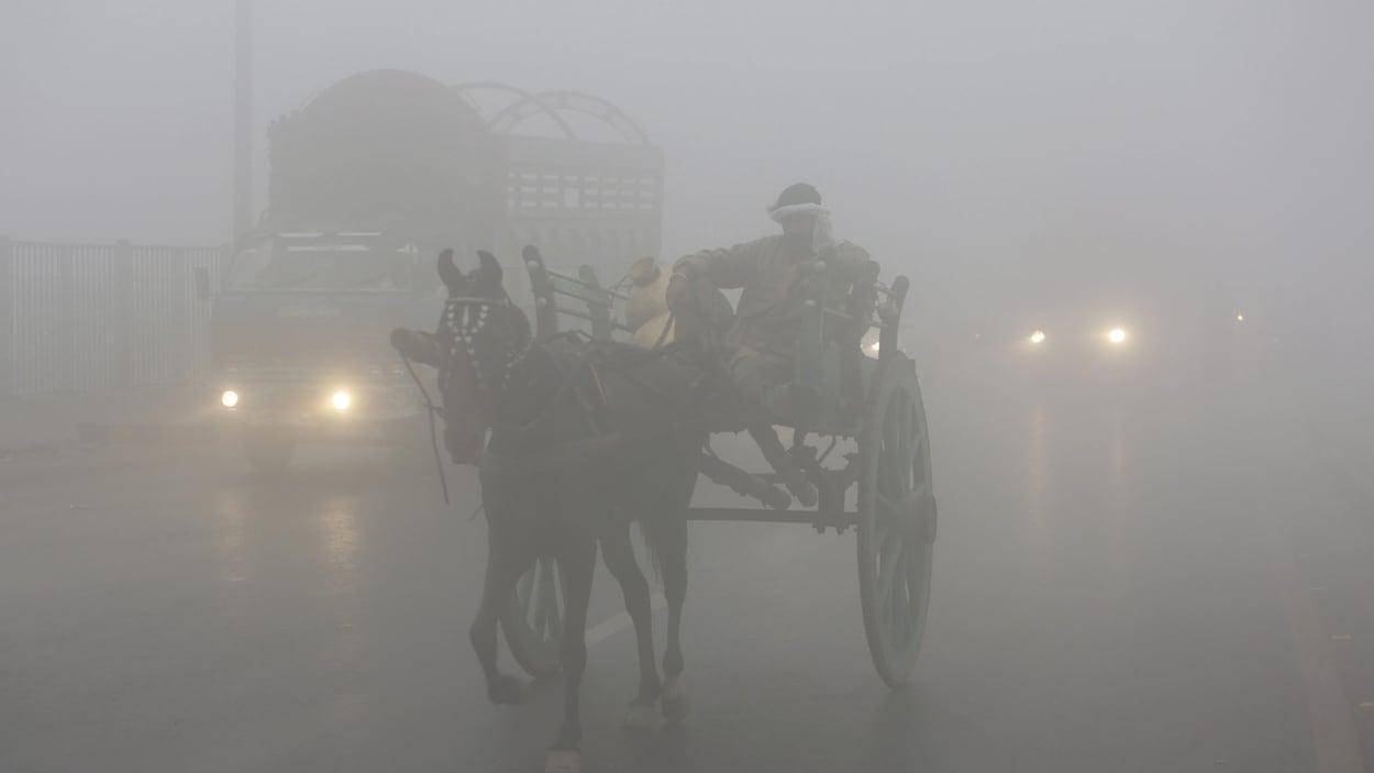 Un homme se fraye un chemin avec son cheval à travers le brouillard de pollution qui s'abat sur la ville de Lahore, au Pakistan.