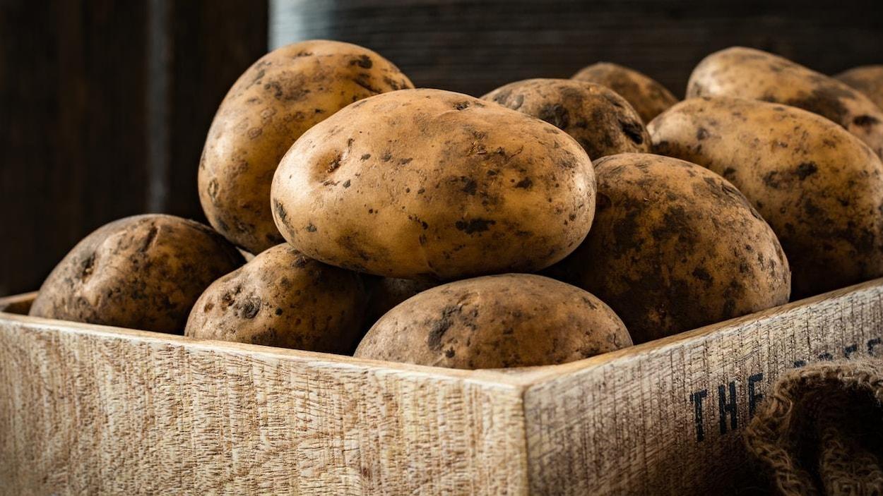 Un cageot rempli de pommes de terre
