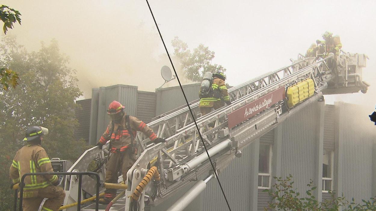Quatre pompiers sur une échelle.