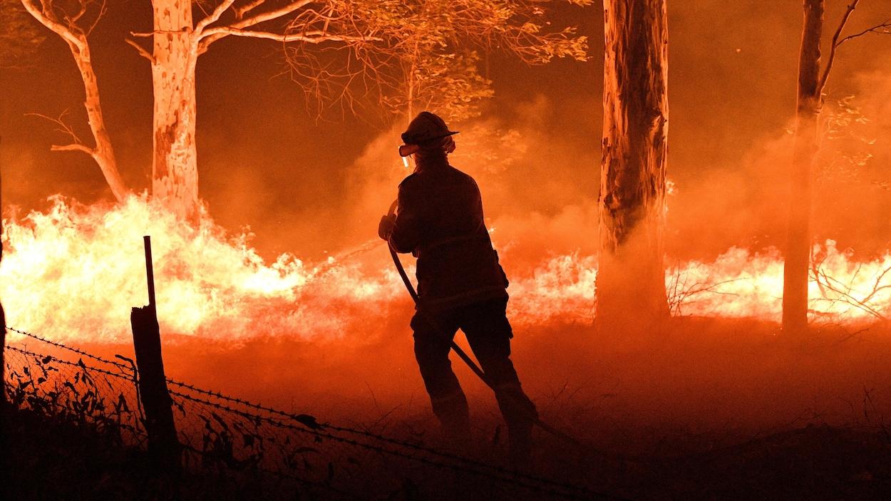 Un pompier arrose des arbres dans l'État de Nouvelles-Galles du Sud.