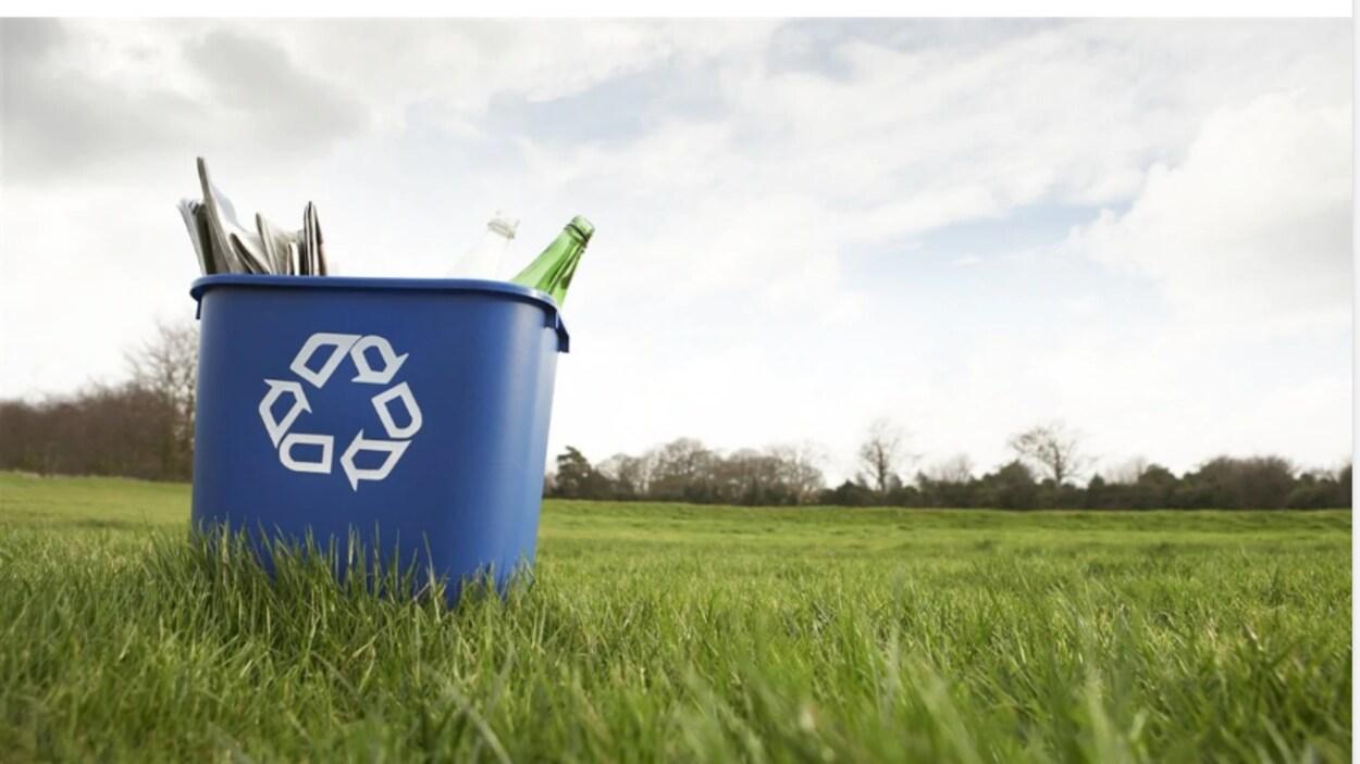 Une poubelle bleue se trouve au milieu d'un champ.