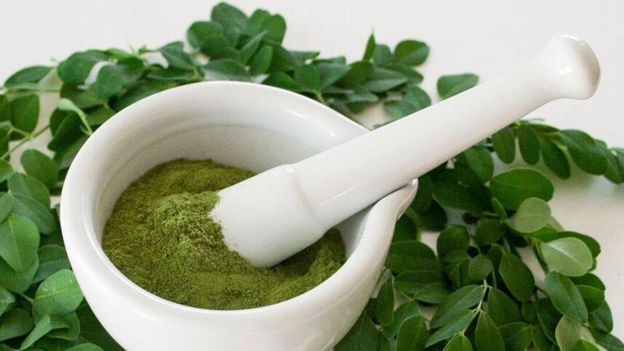 De la poudre verte dans un bol entouré de feuilles de moringa.