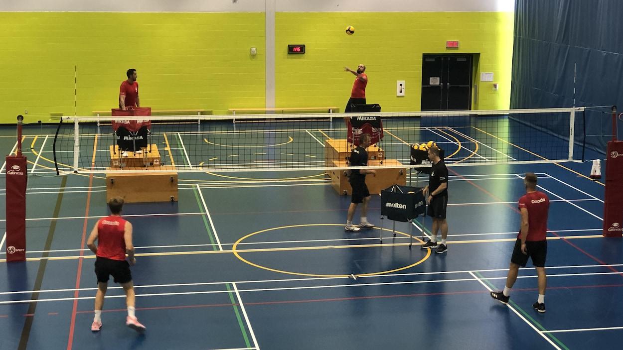 Quatre joueurs de volleyball et deux entraîneurs pendant un entraînement.
