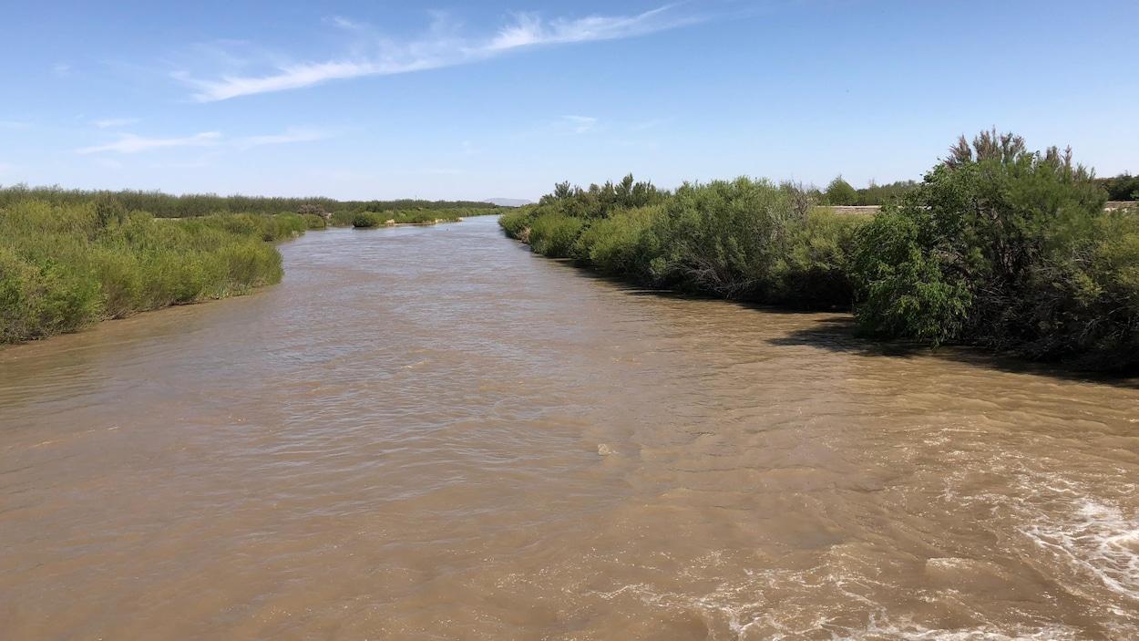 Vue sur le fleuve Rio Grande bordé d'arbres.