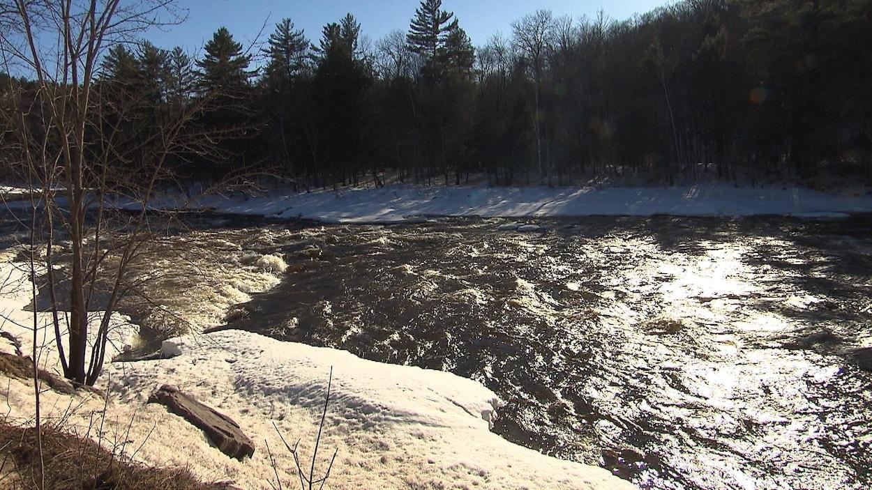 Vue sur la rivière Rouge bordée de neige et d'arbres sans feuille.