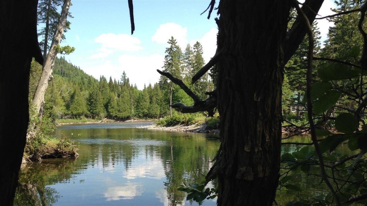 Rivière Sainte-Anne, parc de la Gaspésie