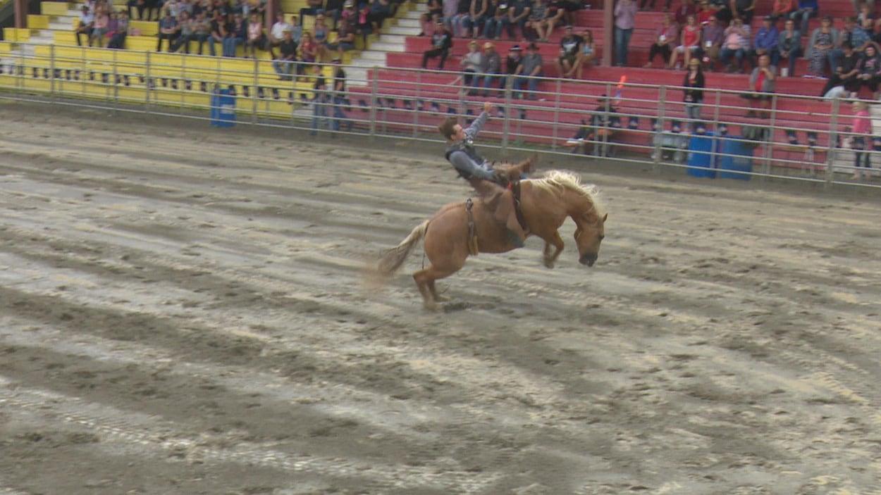 Un homme sur cheval qui saute dans un stade.