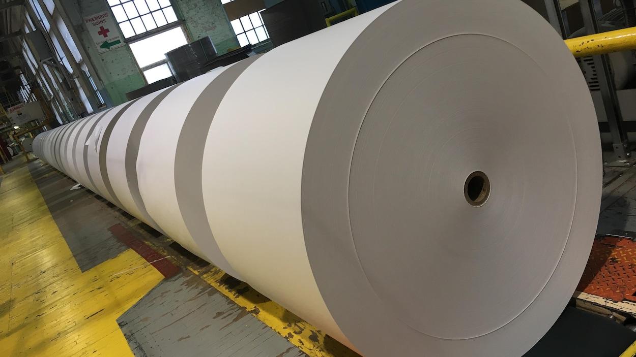 Des rouleaux de papiers dans l'usine.