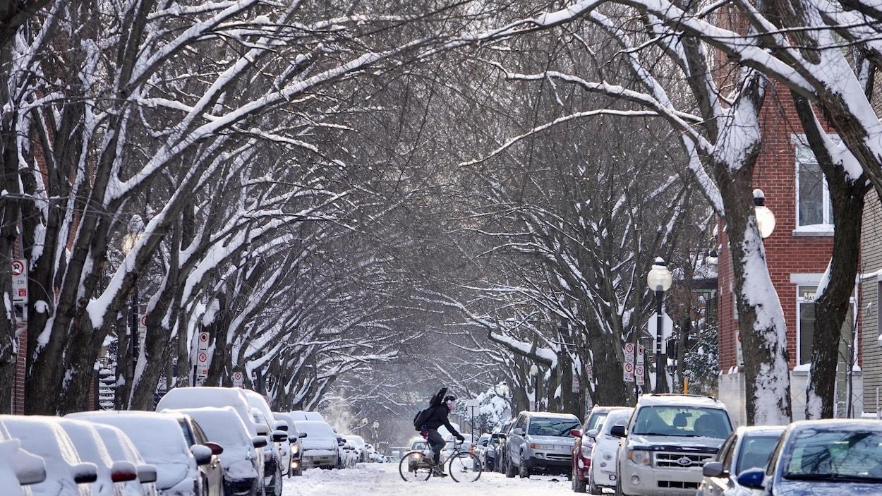 Un cycliste circule dans une rue enneigée à Montréal