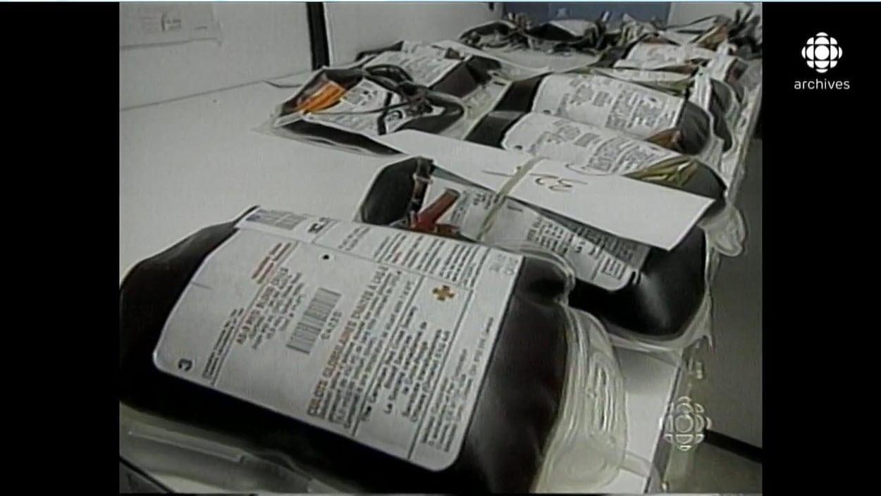 Échantillons sanguins avec des étiquettes de la Croix-Rouge placés sur une table.