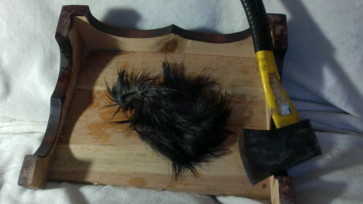 Un bout de peau d'orignal et une hachette