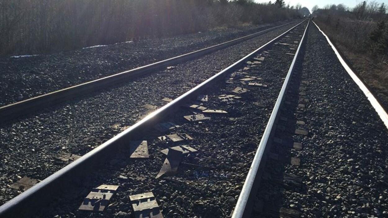 Des selles déposées entre deux rails d'une voie ferrée.