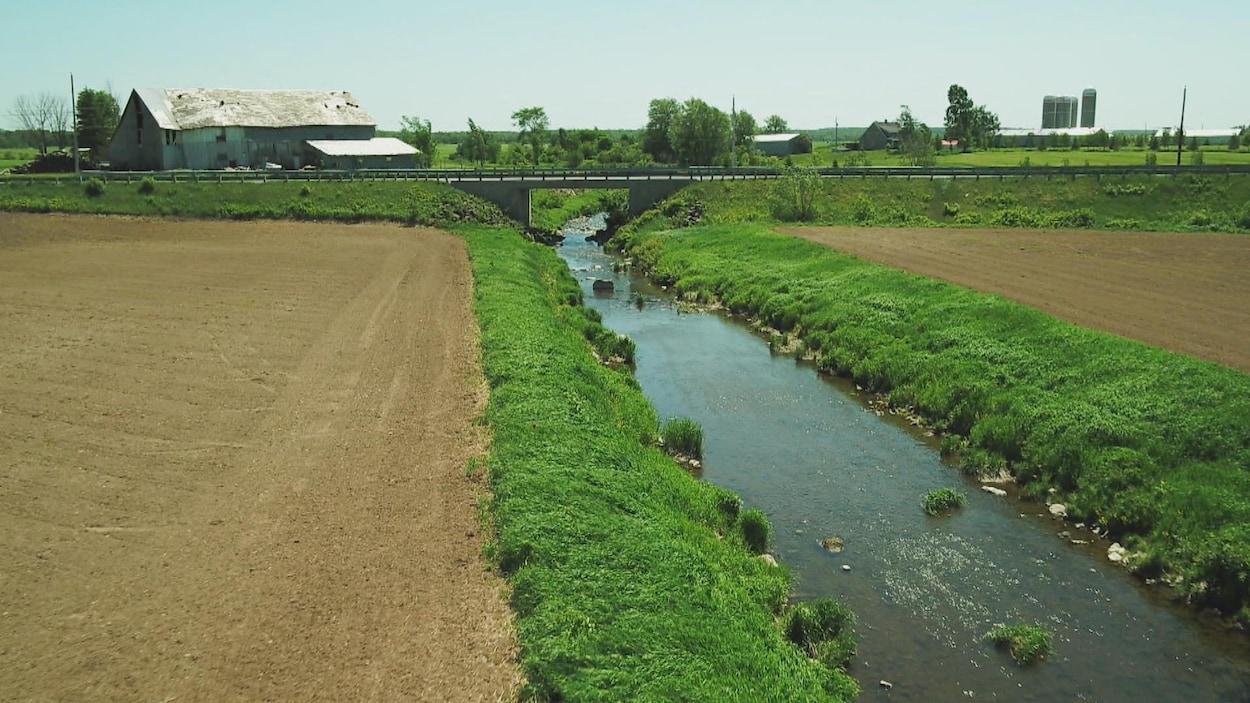 La rivière Boyer qui passe entre deux champs en culture.