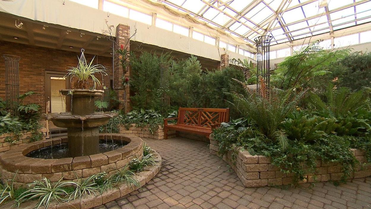 Une fontaine, des plantes et des arbres dans une serre