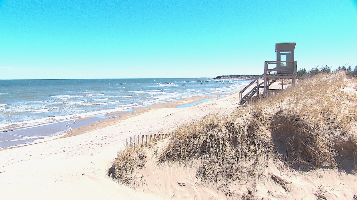 La plage et les dunes avec la mer en arrière-plan