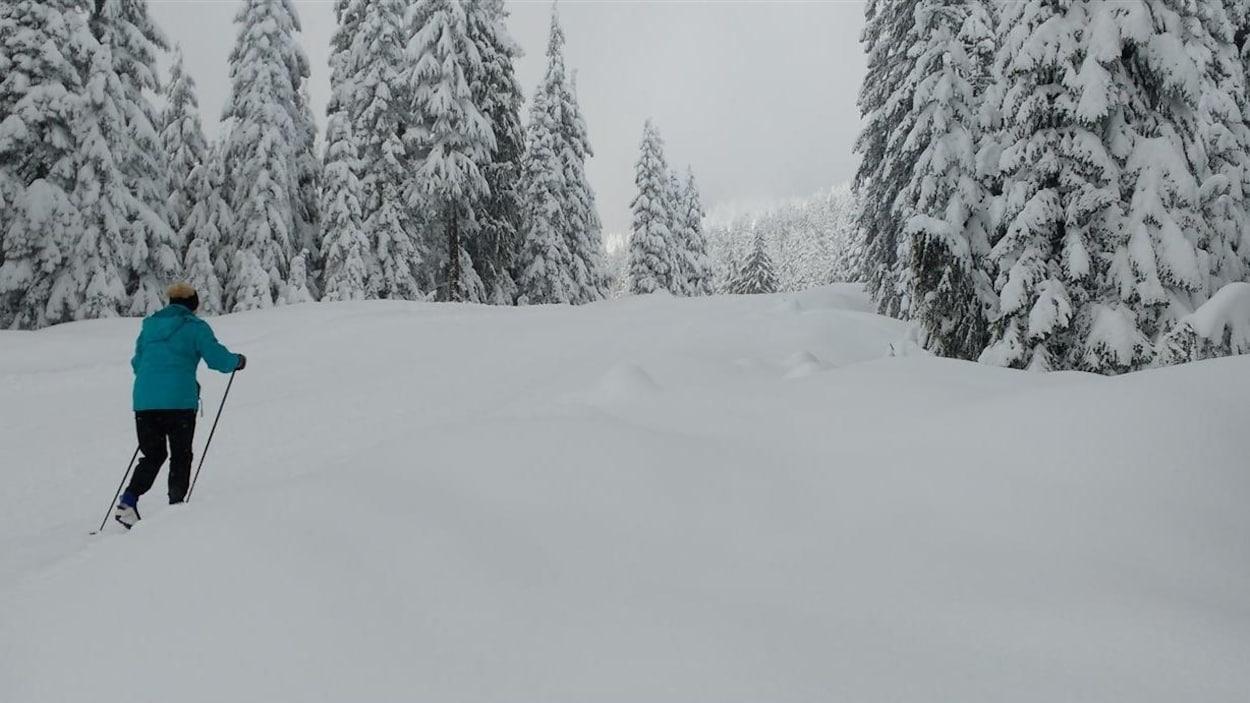 Une skieuse dans un sentier