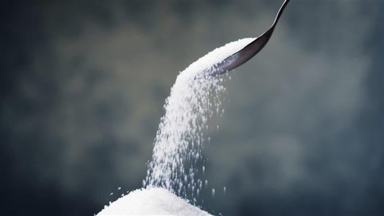 Du sucre dans une cuillère