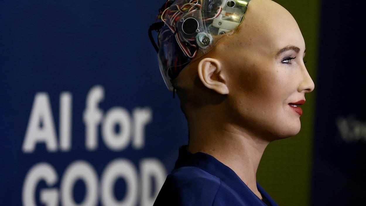 Un prototype de robot « intelligent ».