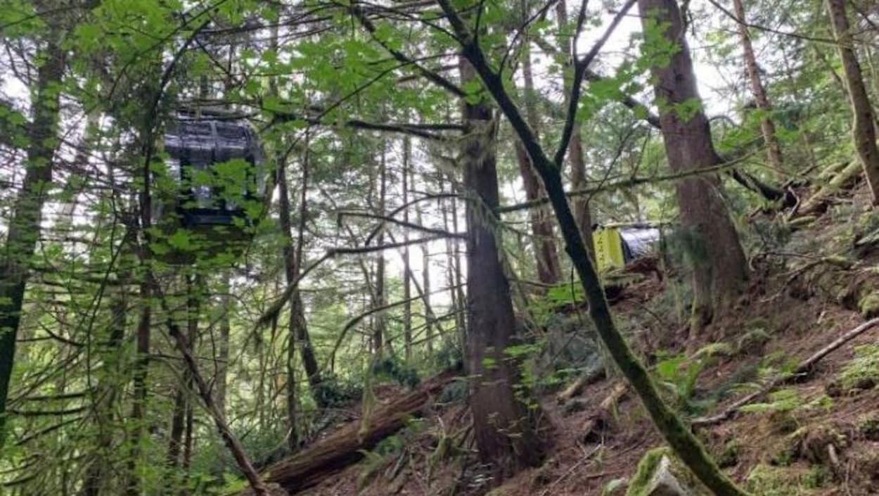 Une cabine de téléphérique sur le sol de la forêt.