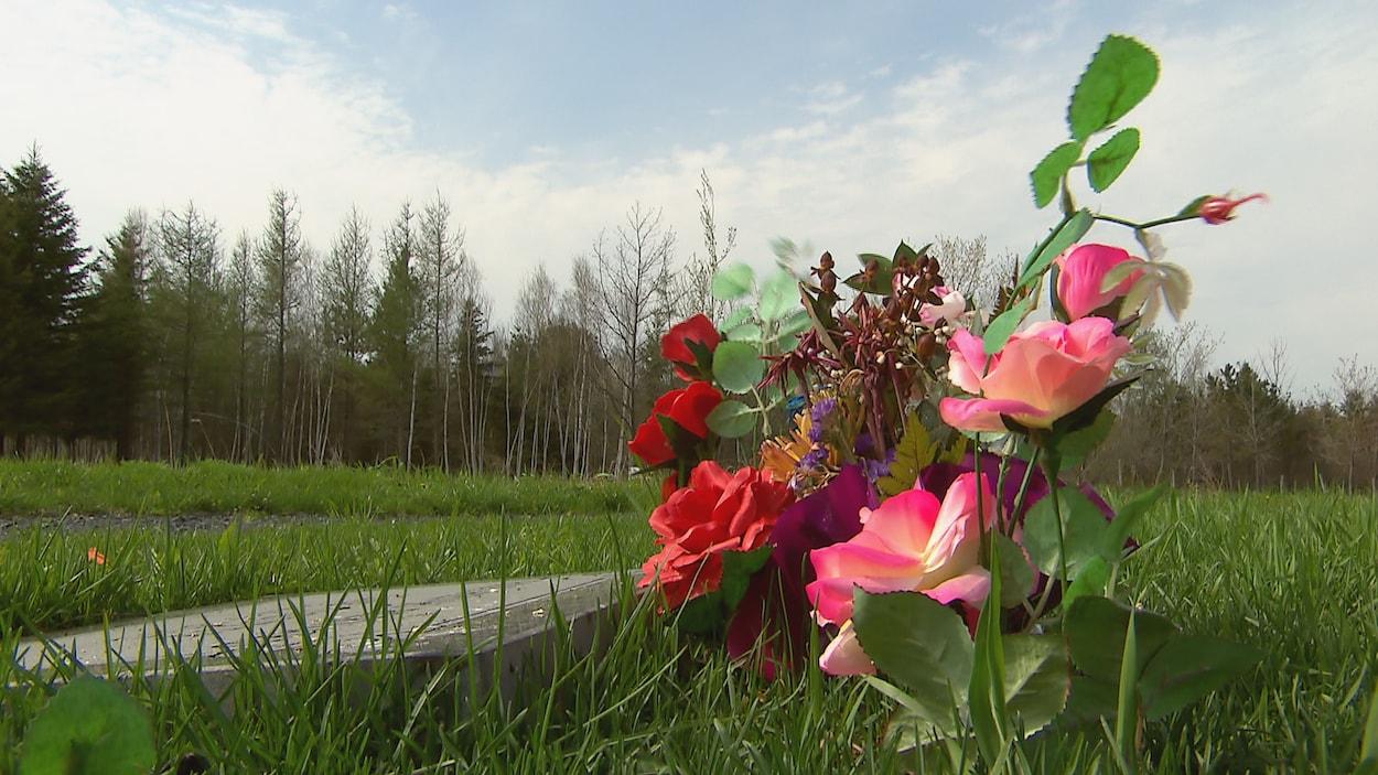 Vue sur le terrain de l'entreprise Harmonia, à Saint-Apollinaire. En avant-plan, on aperçoit un bouquet de fleurs et une stèle funéraire.