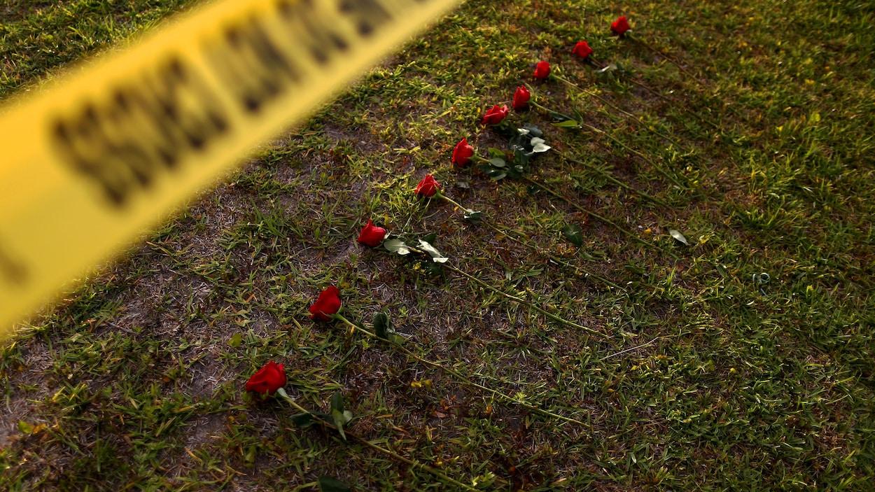 Dix roses posées sur le terrain de l'école secondaire de Santa Fe, au Texas, en mémoire des dix personnes mortes lors d'une fusillade.