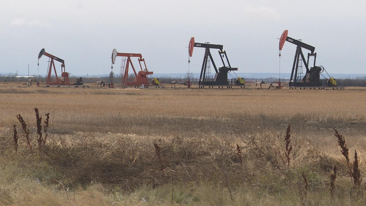 Des tiges de pompage sur des puits de pétrole dans un champ au sud de Peace River, en Alberta. Octobre 2019.