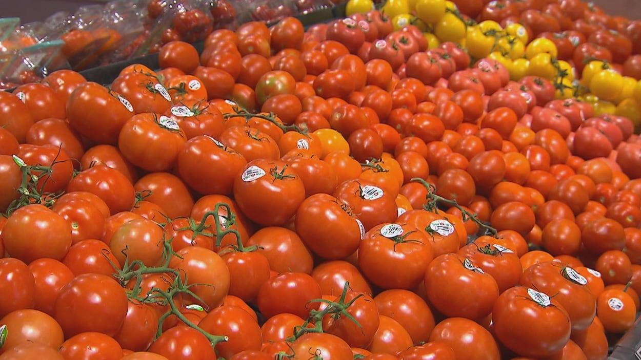 Un étalage de tomates.