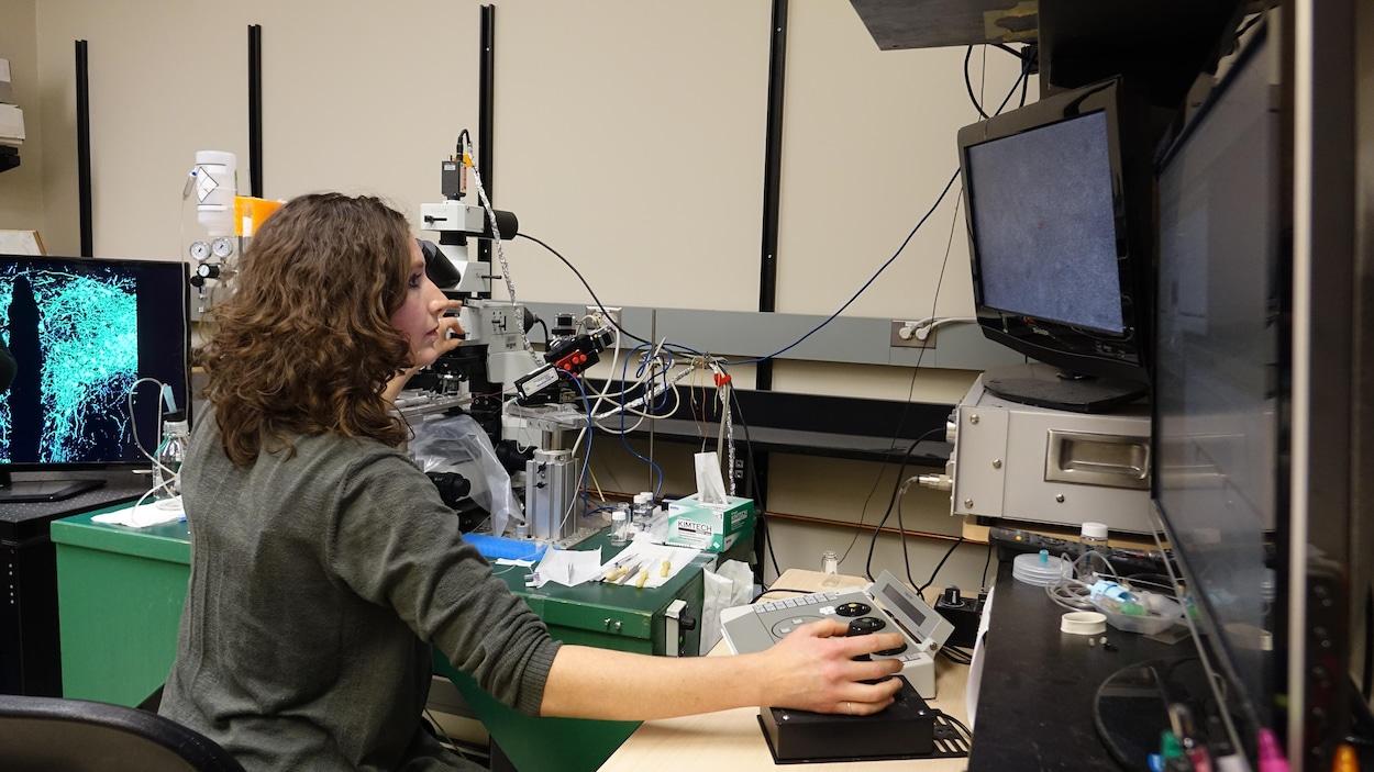 Toni-Lee Sterley manipule un microscope dans un laboratoire