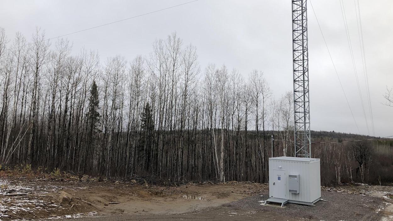 Une tour de télécommunications installée près de la forêt à Saint-François-de-Sales.
