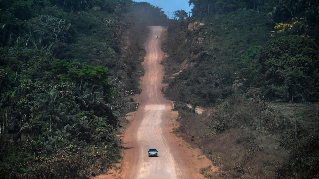 Une route au milieu de la forêt.