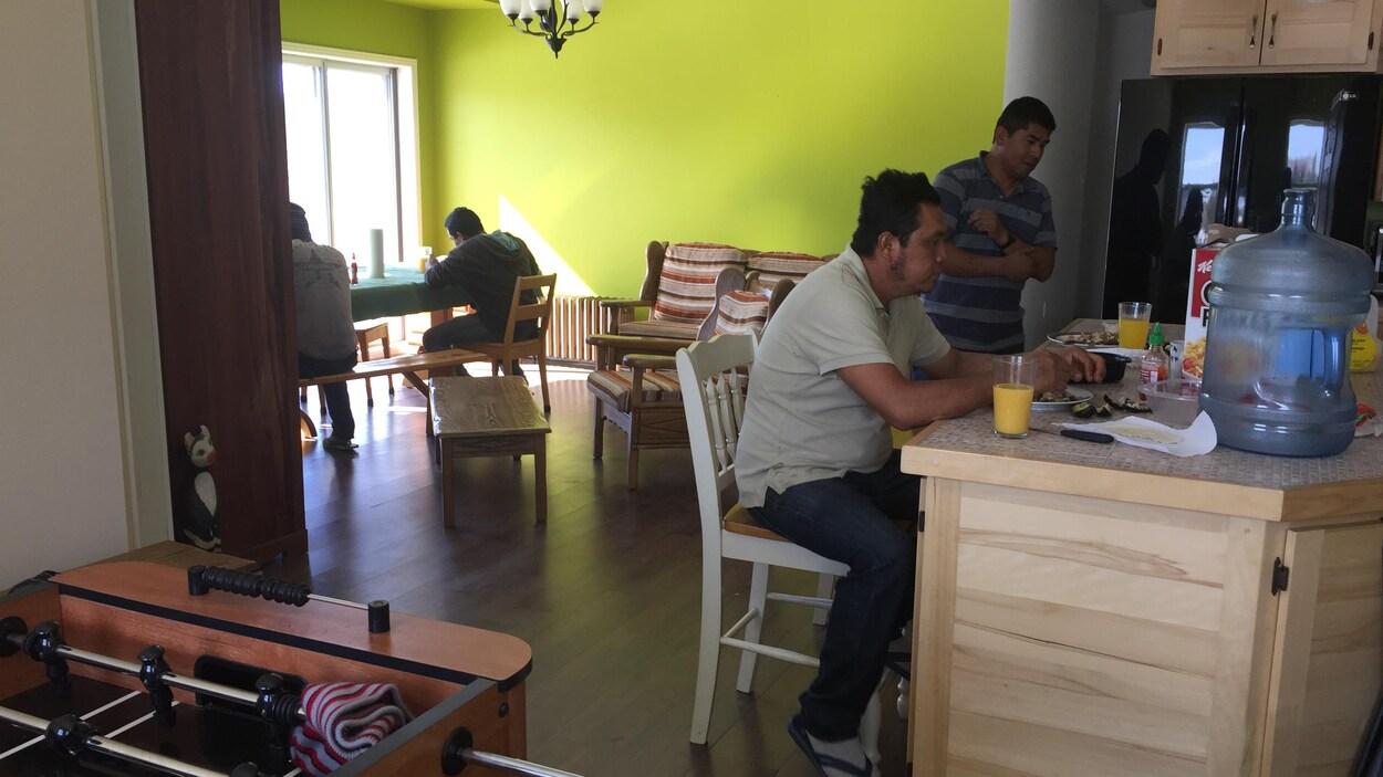 Travailleurs étrangers, les Serres de Gallichan en Abitibi-Ouest
