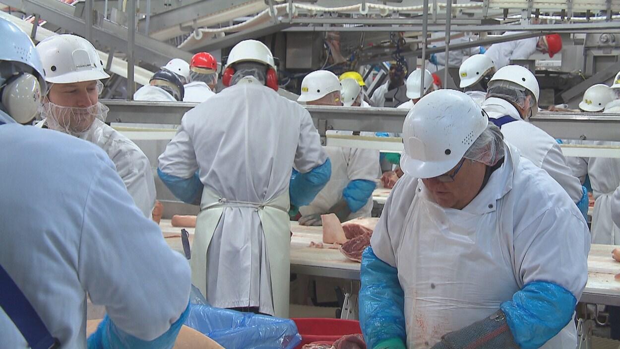 Des employés d'Olymel au travail.