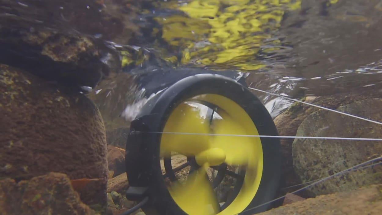 Le Waterlily est une turbine portative qui pèse moins de trois livres.