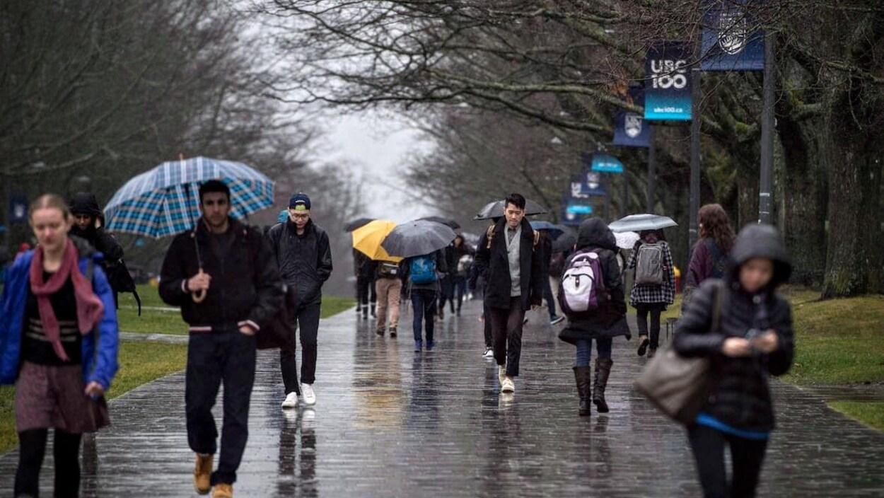 Des étudiants marchent sous la pluie sur le campus de l'Université de la Colombie-Britannique.