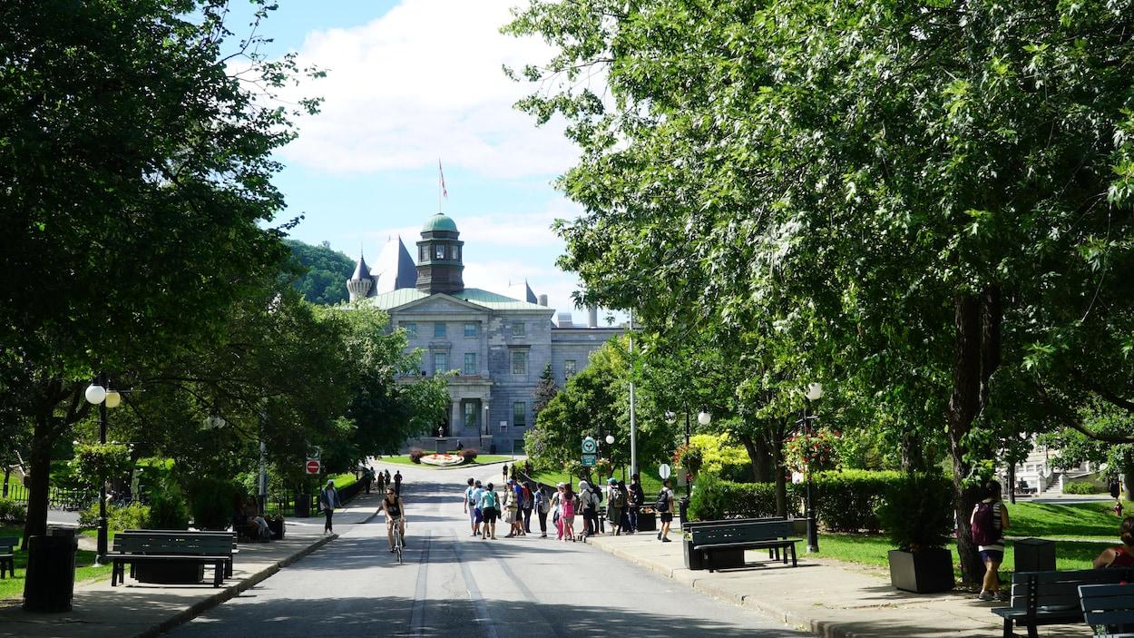 Le campus de l'Université McGill, bordé d'arbres au cœur du centre-ville de Montréal.