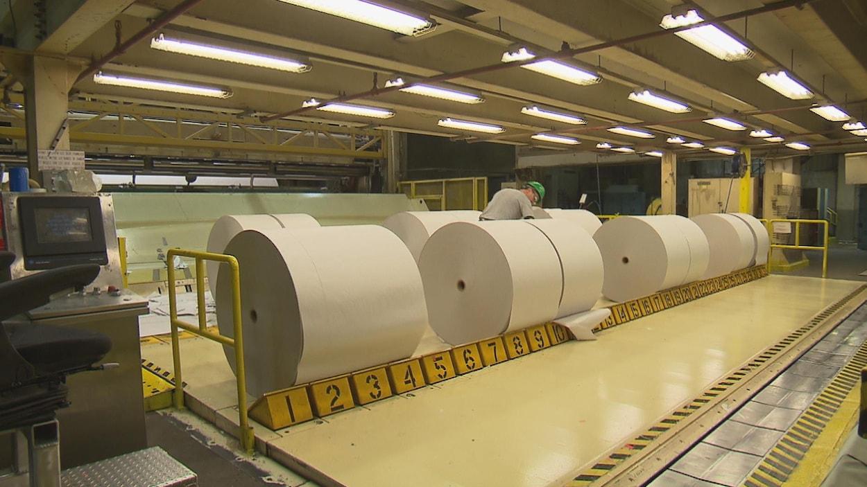 Un employé inspecte d'immenses rouleaux de papier qui sont alignés dans une pièce de l'usine.