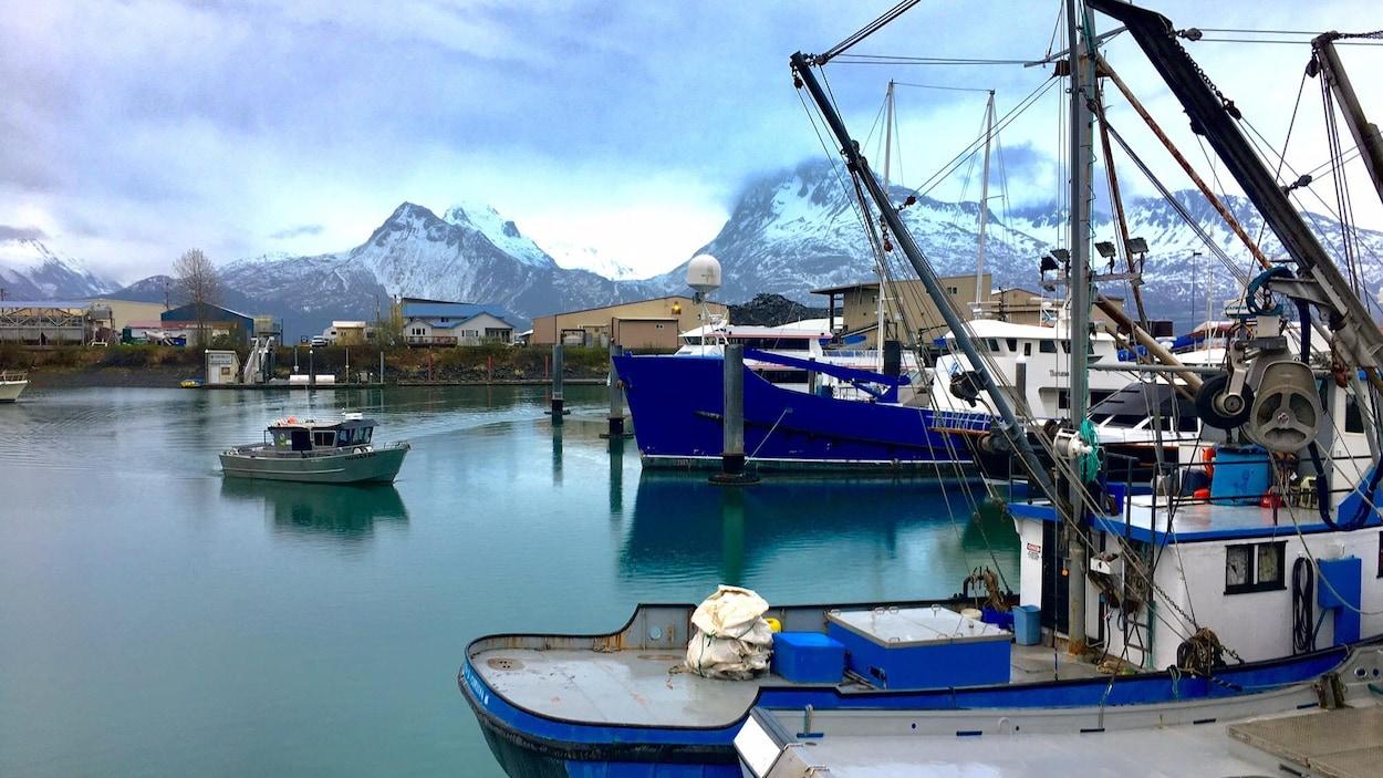 On voit des bateaux de pêche amarrés au port de Valdez. En arrière-plan, on voit les montagnes enneigées.